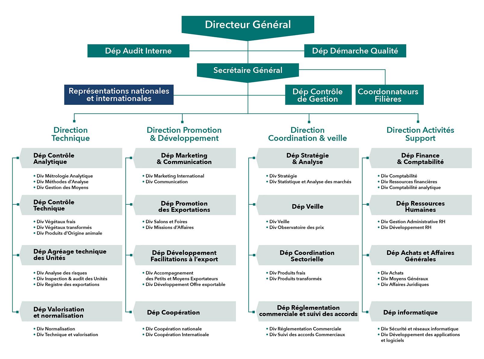 MOROCCOFOODEX organization chart